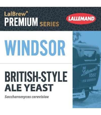 Levadura en polvo Lallemand Windsor Ale 11g