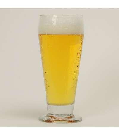 Kit cerveza Kolsch sin moler - todo grano 20 litros