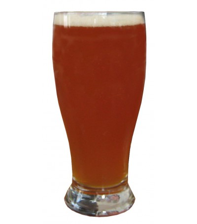 Kit cerveza Imperial IPA - todo grano sin moler 20 L