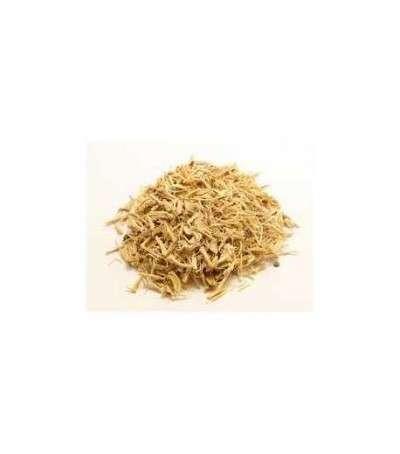 Ginseng - eleuterococus raiz cortada