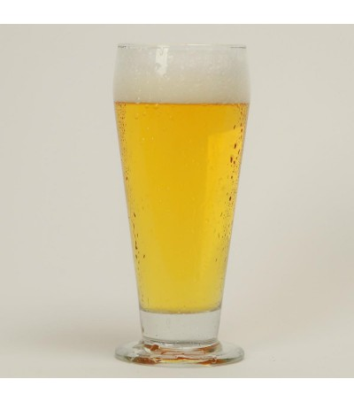 Kit cerveza Kolsch sin moler - todo grano 10 litros